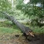 Ураган в Угличе [видео]